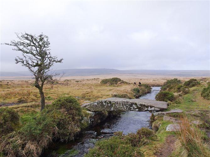 Main image for Northill Lodge,Chagford, Devon, United Kingdom