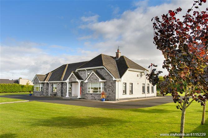 Photo of Clonsast , Bracknagh, Portarlington, Laois