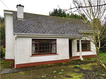 Photo of Creevy Road, Roscommon, Roscommon
