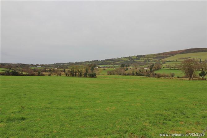 Land C.78 Acres / 31.56 Ha, Tuckmill, Baltinglass, Wicklow
