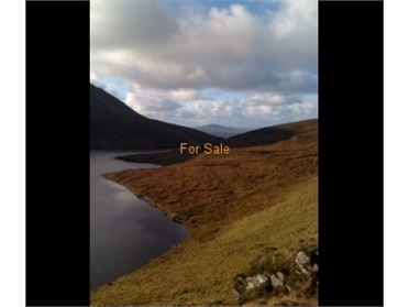 550 acre hill farm for sale at Ballyness Mountain, Falcarragh, Co. Donegal