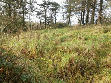 Photo of Site With Unrestricted Planning, Coolmoreen, Innishannon