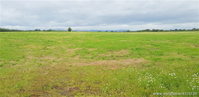 Main image for Curragh Lower , Ardfinnan, Tipperary
