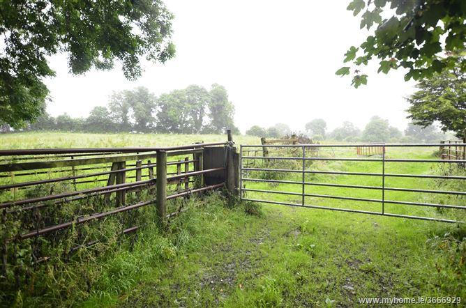 Cartronbrack.Kenagh., Keenagh, Longford