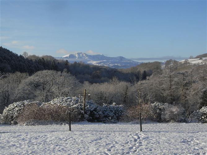 Main image for Y Bwythyn at Henfaes,Rhydymain, Gwynedd, Wales