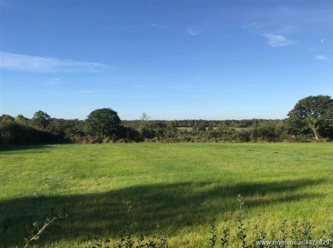 Main image for Monaduff, Drumlish, Longford