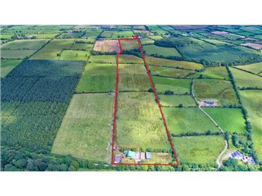 Photo of c.45 Acres Ballintillan, Carlanstown, Kells, Meath
