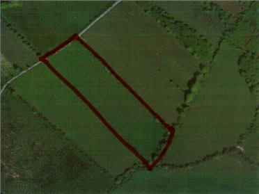 Main image of C. 12.3 Acres at Rosmeen, Kells, Meath