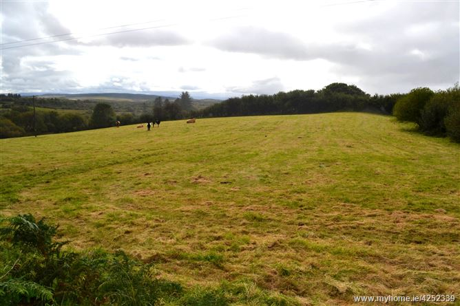 Non Residential Lands, Cloondaff, Glenhest , Newport, Mayo