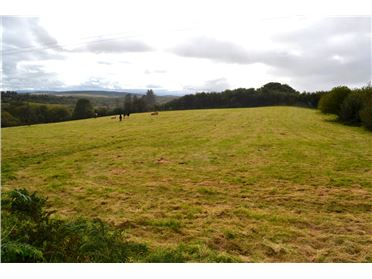 Main image of Non Residential Lands, Cloondaff, Glenhest , Newport, Mayo