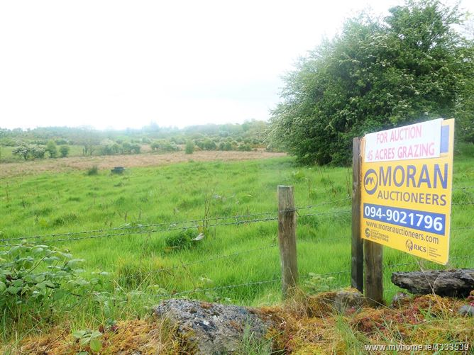 Public Auction c. 45 acres of grazing to let , Gallen, Straide,                                                                            , Foxford, Mayo