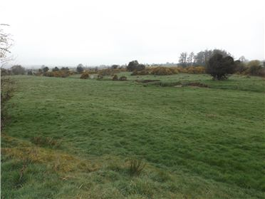 Photo of c. 9.81 acres, Derrylusk, Mountrath, Laois