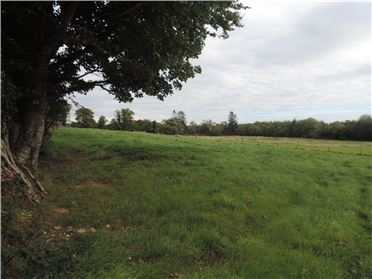 Photo of Robinstown (Site), Palace East, Enniscorthy, Co. Wexford