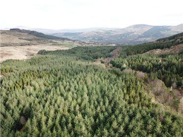 Image for Gullaba, Kilgarvan, Kerry