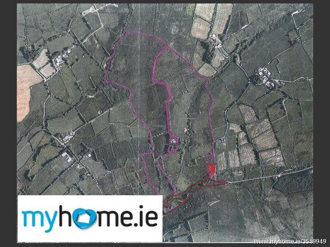 Glentanemacelligot, Ballydesmond, Co. Cork