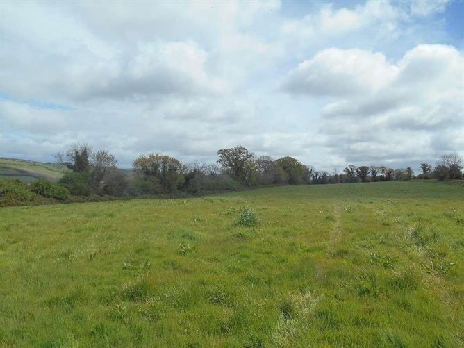 Main image for Sapperton South, Lismore, Co. Waterford