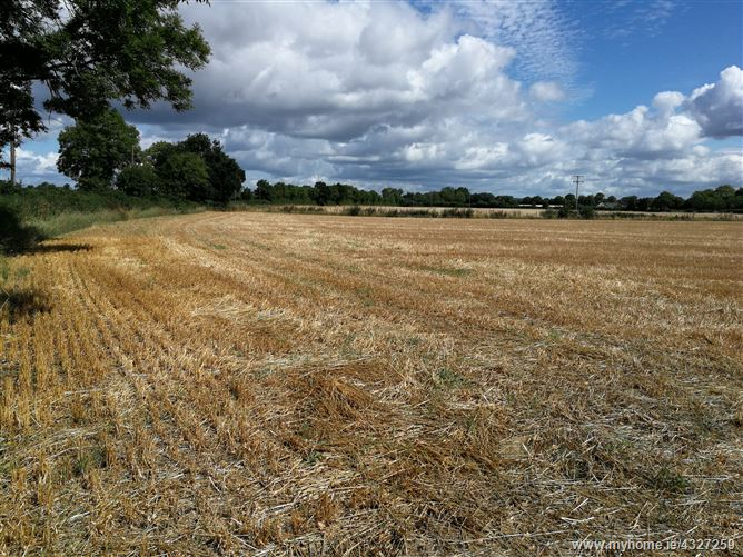 Main image for 0.75 acres, Vicarstown, Laois