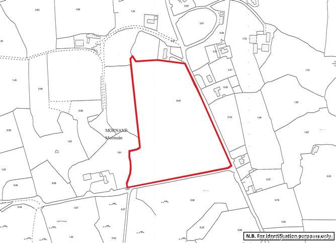 Lands comprised within Folios LK19216F and LK25091F, Morenane, Kilcornan, Co. Limerick