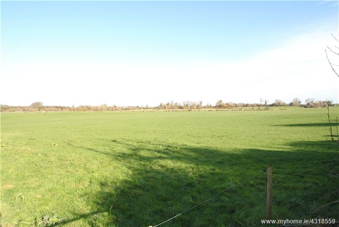Approx. 6.29 Hectares/15.15 Acres, Busherstown, Moneygall, Birr, Co Offaly