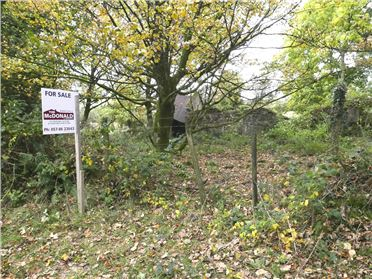 Photo of 10 Acres of Land with Derelict Cottage, Kinnitty, Offaly