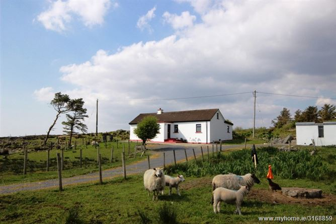Colemans Cottage, Cashel, Galway
