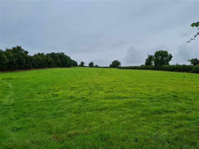 Main image for c. 4.92 Acres at Grange, Maganey, Laois