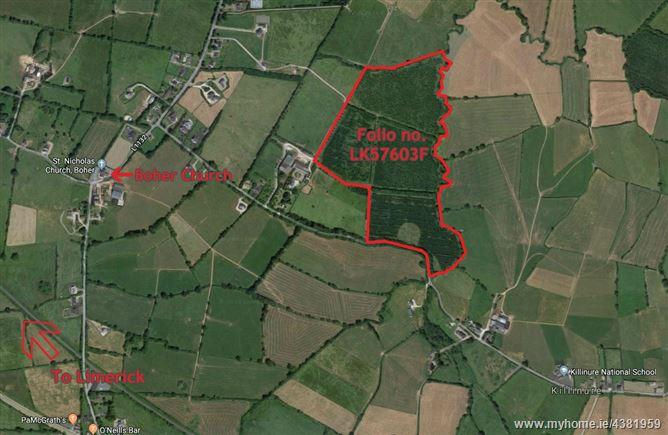 Main image for Bothargar, Clanwilliam, Boher, Limerick