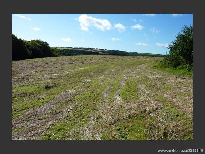 89 Hectares C 22 Acres Woodenbridge Wicklow