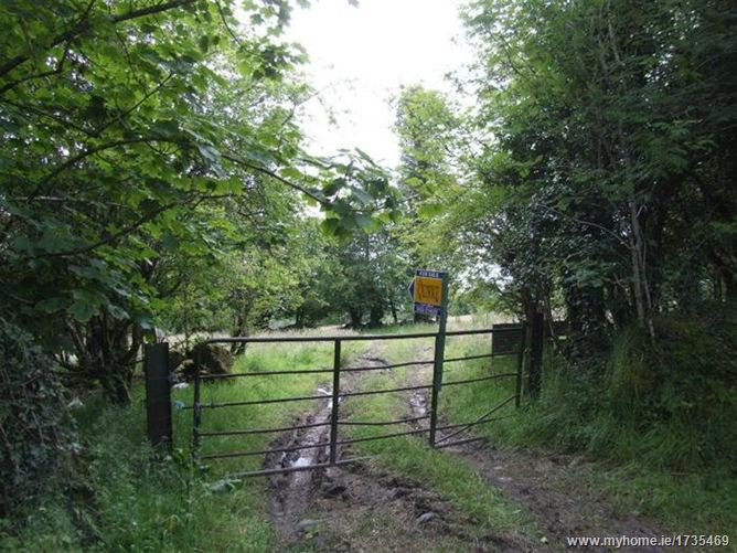 Boolabrien Upper, Ballymacarbry, Clonmel, Co. Tipperary