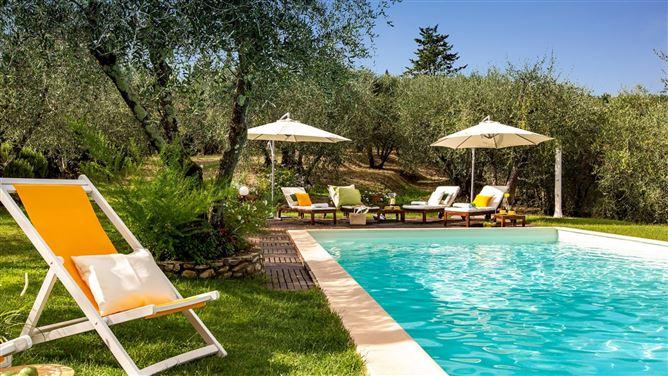 Main image for Pastoral Dream,Provincia di Lucca,Tuscany,Italy
