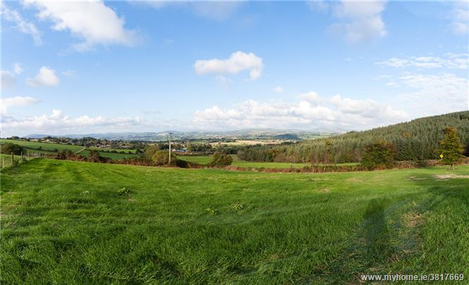 Site At, Ballytarsna, Carnew, Co Wicklow