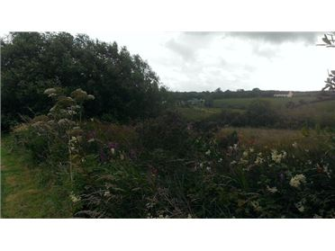 Photo of Vacant Land, Ennis, Clare