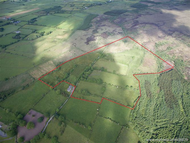 c.49 Acres at Belwell, Dunmore, Galway