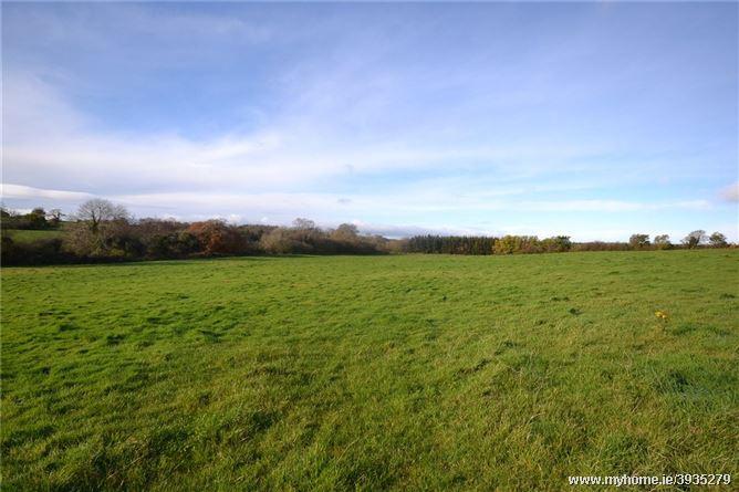 Ballybeg, Glenbrien, Enniscorthy, Co Wexford