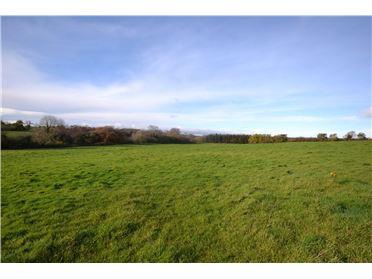 Main image of Ballybeg, Glenbrien, Enniscorthy, Co Wexford