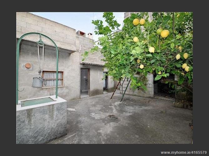 Calle, 07450, Santa Margalida, Spain