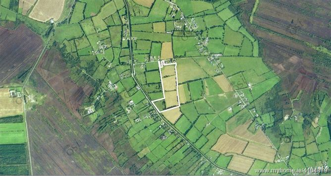 Killina Lower, Carbury, Co. Kildare - c.26 acres