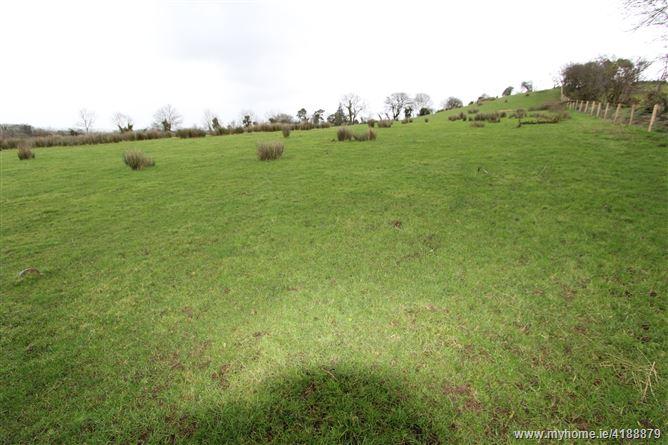 Shantonagh, Derryvalley, Ballybay, Monaghan