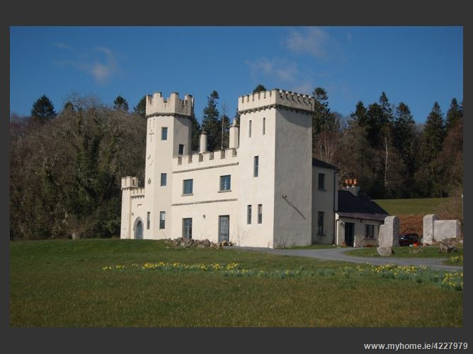 Main image for Country Castle.  ,Ballinlough East, Bansha,  Tipperary, Ireland
