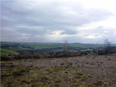 Photo of site at Ballycolman, Killeagh, Co. Cork
