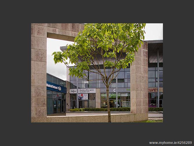 Castletroy Park, Castletroy, Limerick City