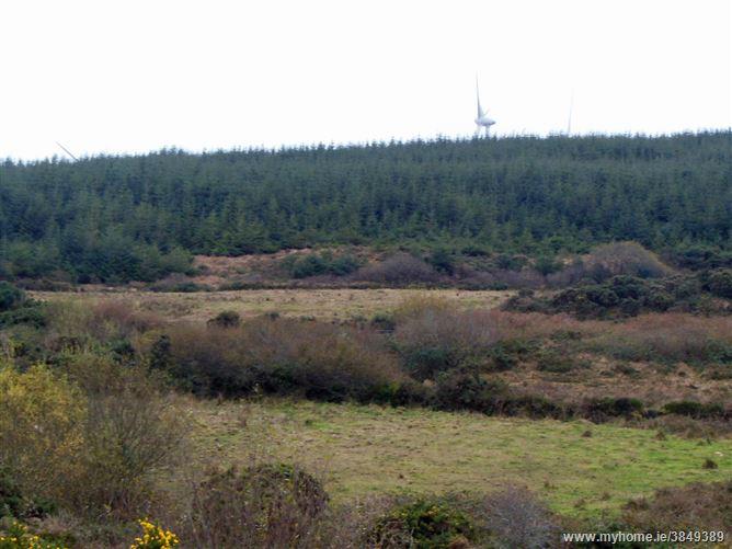 Dromourneen, Bantry,   West Cork