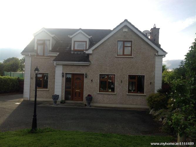 Normal Irish family, Maynooth, Co. Kildare