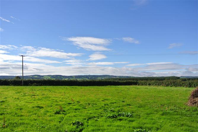 Main image for Ballintee, Dunnamaggan, Kells, Kilkenny