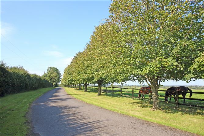 Main image for Portree Stables on c. 57.1 Acres, Boston, Straffan, Kildare