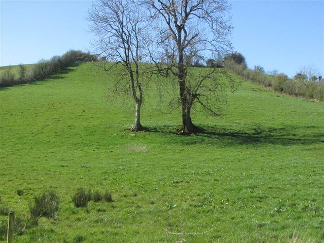 Main image for Lisnadarragh, Carrickmacross, Co. Monaghan