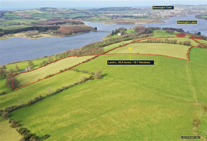 Main image for Land c. 38.8 Acres / 15.7 Hectares, Baltyboys, Blessington, Wicklow