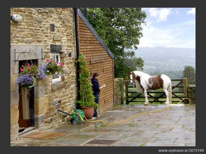 Main image for The Loft Pet,Millthorpe, Derbyshire, United Kingdom