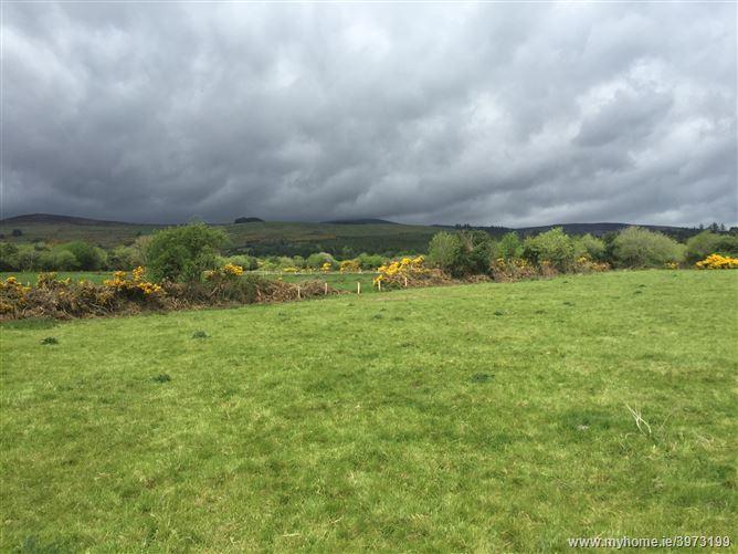 Black Road, Skeheenarinky, Cahir, Tipperary