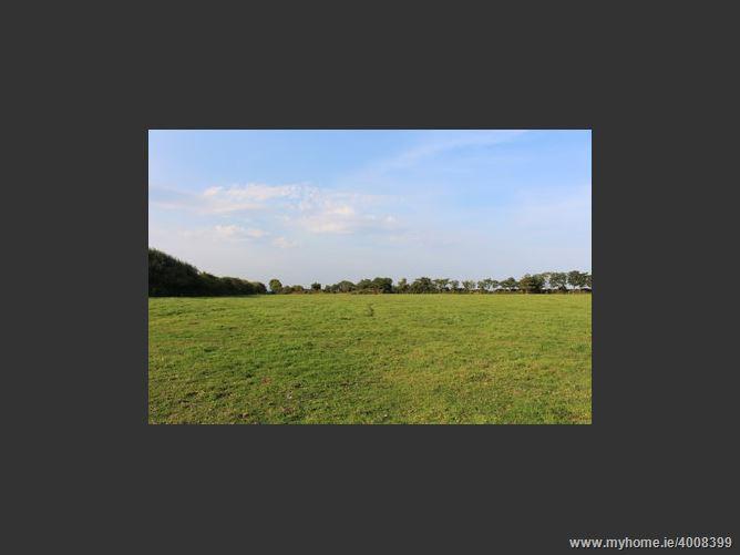 Balinglen , Tara Hill, Wexford